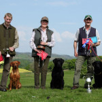 Richard Howson with Lunefirefly Merlot, Nicola Rudgard with Waterford Featherman & Neil Hardy with Marranscar Viper & Risefit Black Adder of Marranscar